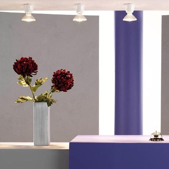 schlichte und elegante fassungsspots als aufputz spots f r. Black Bedroom Furniture Sets. Home Design Ideas